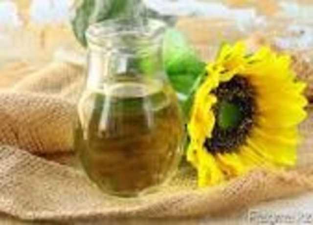 Куплю: Подсолнечник масличный