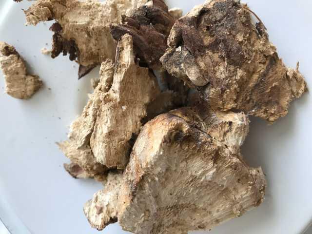 Продам Агарикус лиственная губка