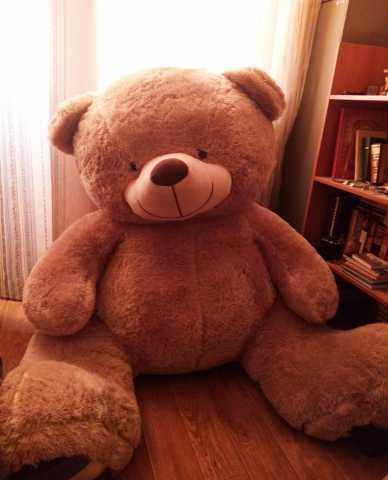 Продам Медведь 180