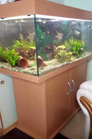 Продам аквариум 180л с тумбой