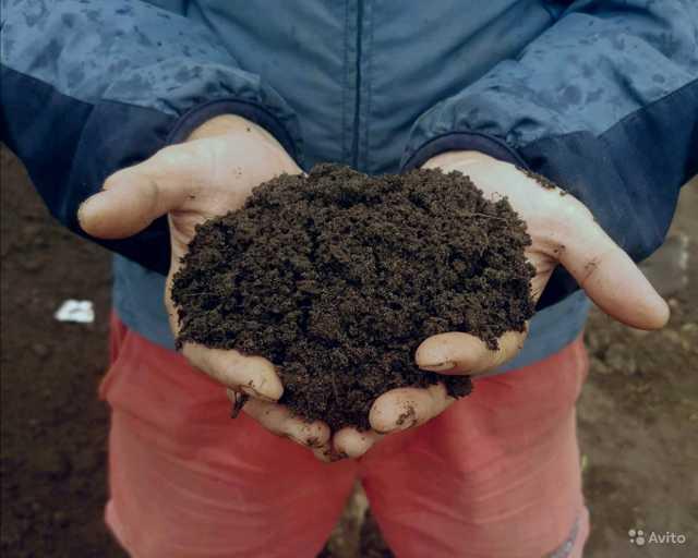 Продам Земля плодородная с доставкой