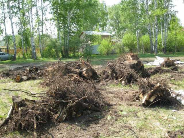Предложение: Уборка участков. Спил деревьев.