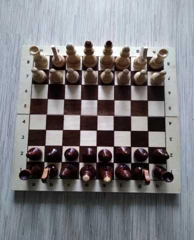 Продам Шахматы новые.
