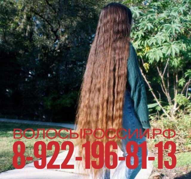 Куплю волосы в Новоросийске!