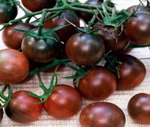 Продам: Черри томаты семена, сайт скороспелка.рф