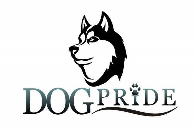 Предложение: Кинологический  центр DogPride