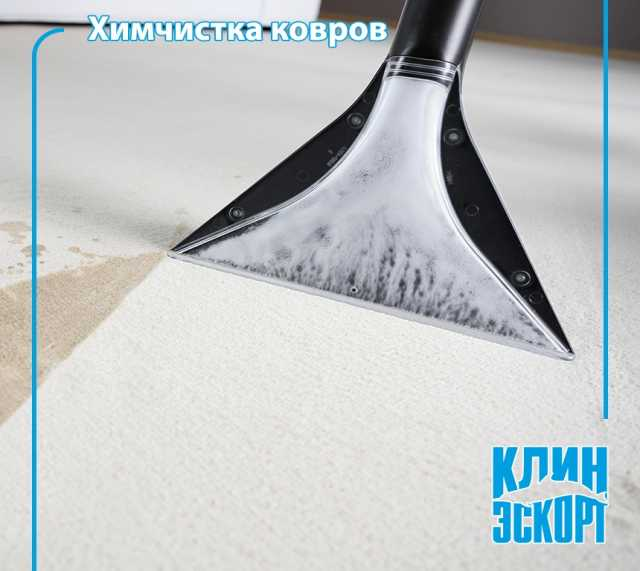 Предложение: Химчистка ковров и мягкой мебели