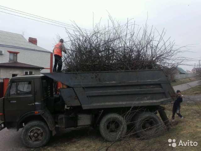 Предложение: Вывоз Мусора в Белгороде с грузчиками и