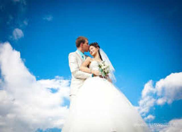 Предложение: Организация и проведение  свадьбы.