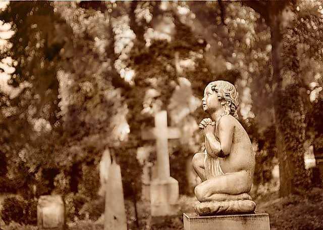 Предложение: Уборка могил на кладбище