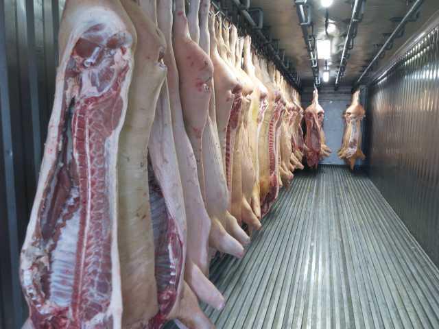 Продам Продам мясо свининны от полутуши, частям