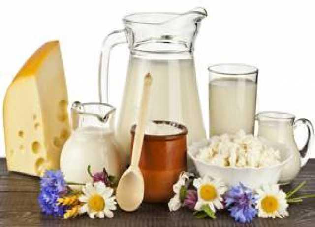 Продам молоко ,творог,сметана,масло,сыр,ряженка