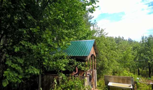 Продам: Участок 25 соток ИЖС в лесу, баня.