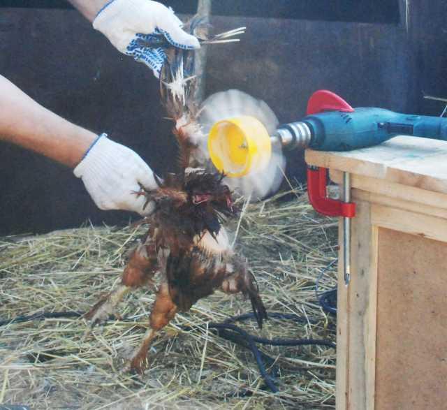 Продам Фермер НП 01 насадка для ощипа курицы