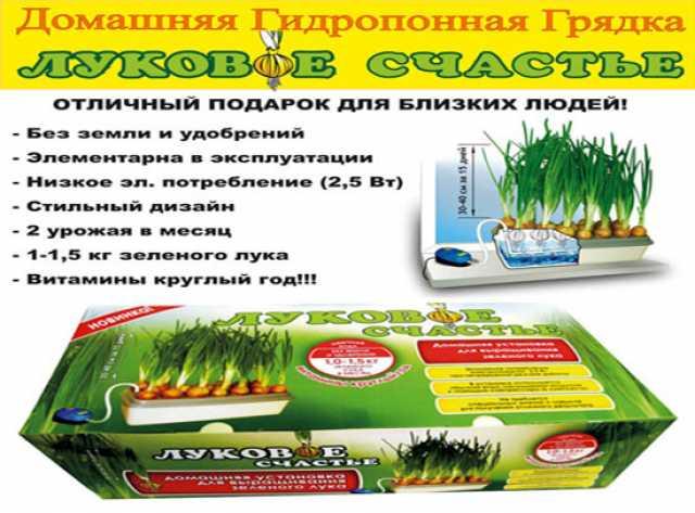 Продам: Луковое Счастье выращивать зелёный лук