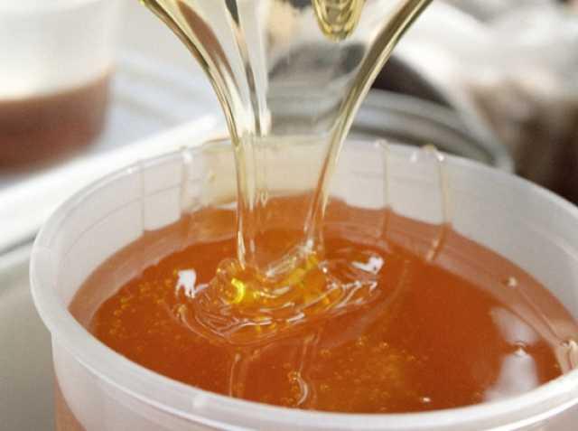 Продам мед - липа дальневосточная