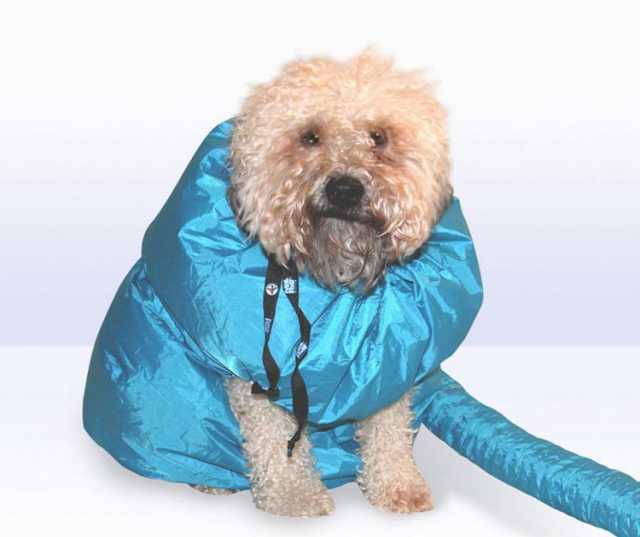 Продам Фен компрессор для собак