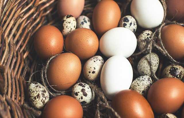 Продам Яйцо домашнее отборное, с собственного п