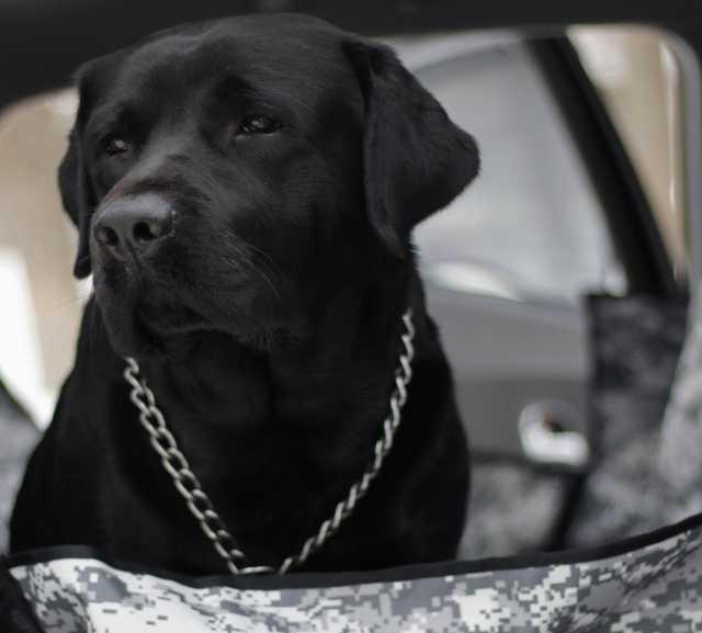 Продам Автогамак - Серый камуфляж