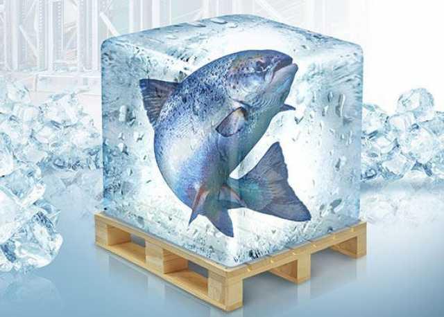 Продам Рыбоперерабатывающее оборудование. Все в