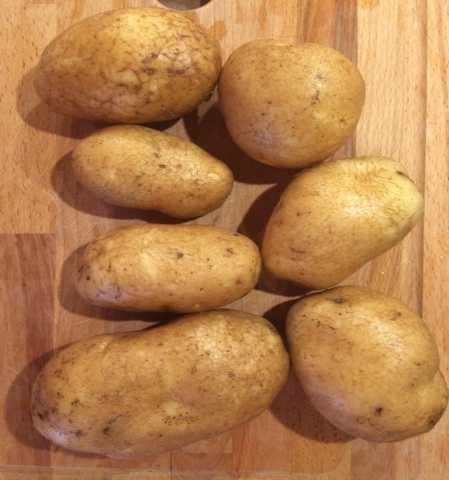 Продам Картофель сорт Бриз, калибр 5+
