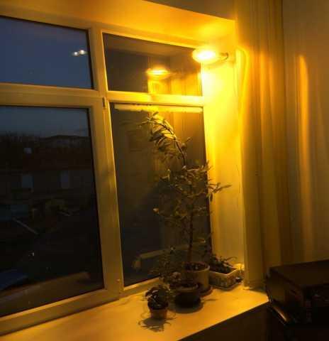 Продам Лампы ДНаЗ – натриевые зеркальные в Крас