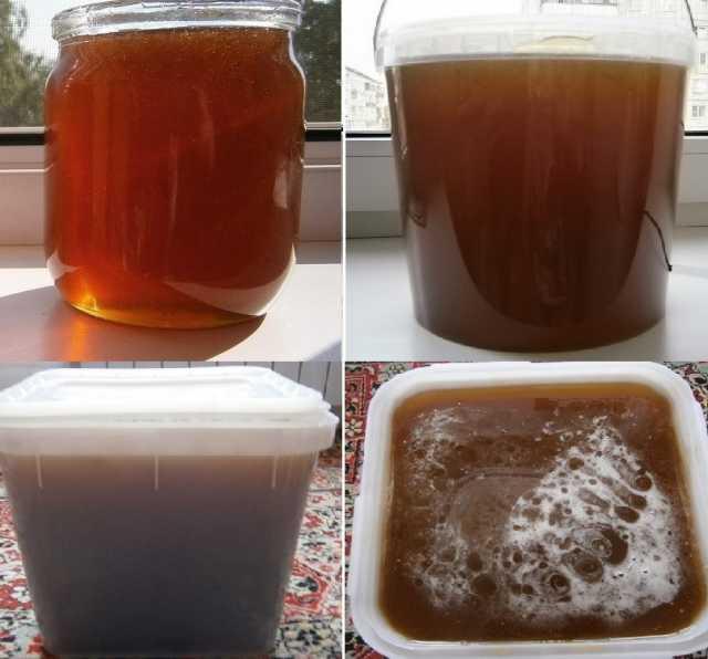 Продам Мёд разнотравье Алтайский вкусный 2018г