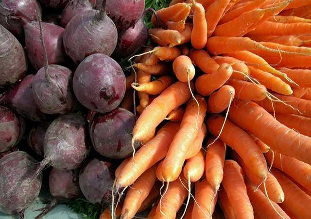 Продам Продам свёклу..морковь