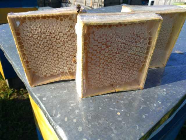 Продам Алтайский Секционный мед в мини рамках.