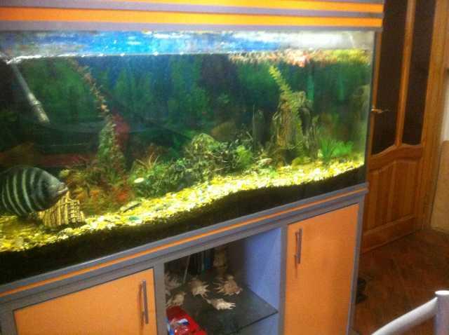 Продам продам аквариум