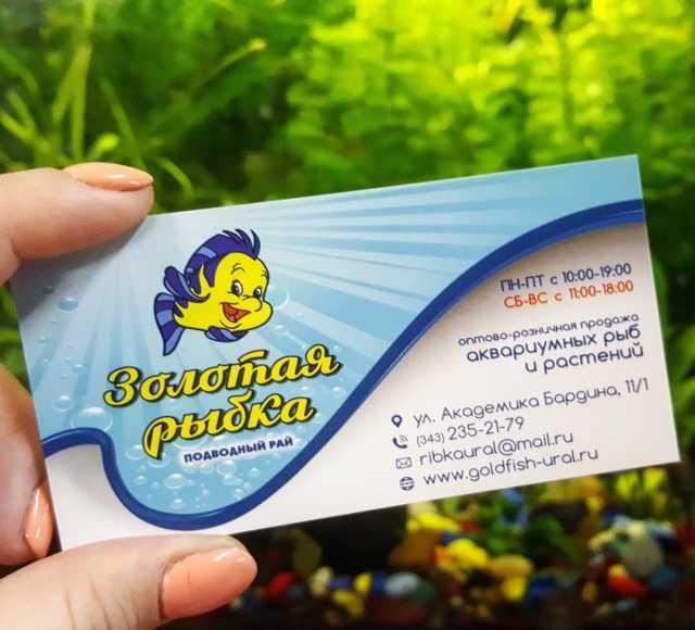 Продам Аквариумные рыбки опт и розница