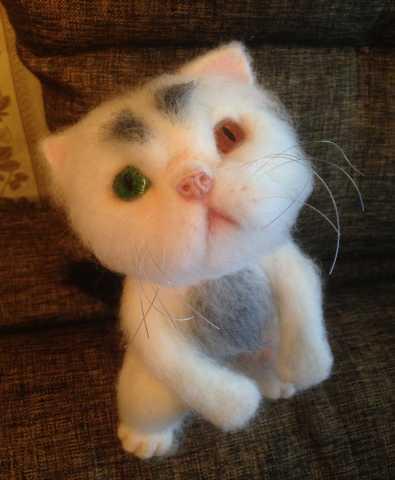 Продам Персидский котик для интерьера в подарок