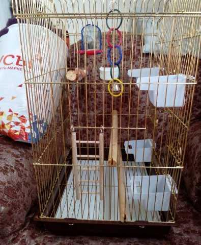 Продам Клетка—вольер для средних попугаев