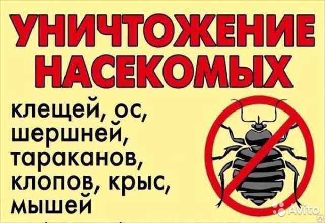 Предложение: Уничтожение всех видов насекомых и грызу