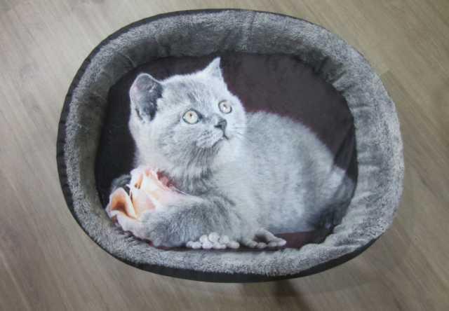 Продам Новая лежанка для кошек