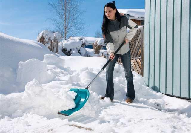 Предложение: Уборка снега. Чистка крыш.