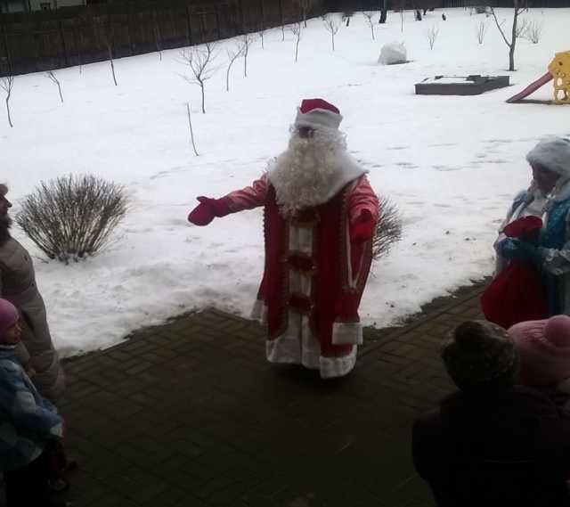 Предложение: Дед Мороз и Снегурочка на дом