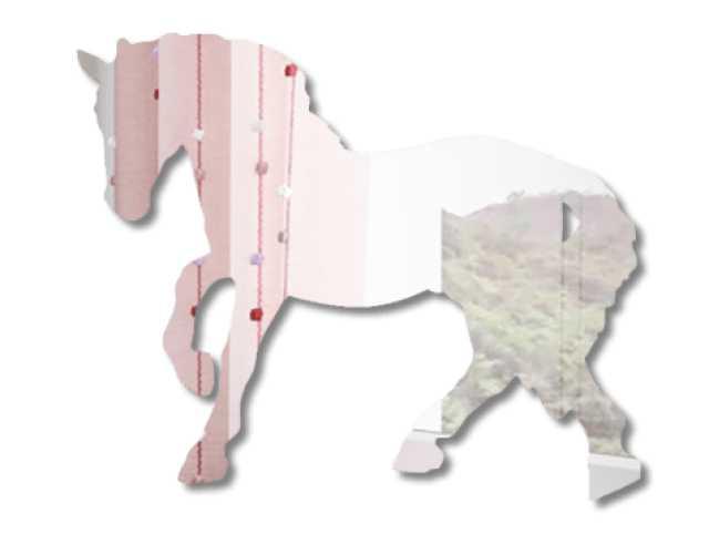 Продам Зеркало из органического стекла Horse 1