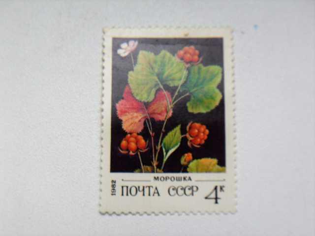 Продам: Марка 4к 1982 год СССР Морошка