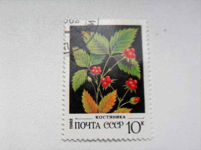 Продам Марка 10к 1982 год СССР Костяника