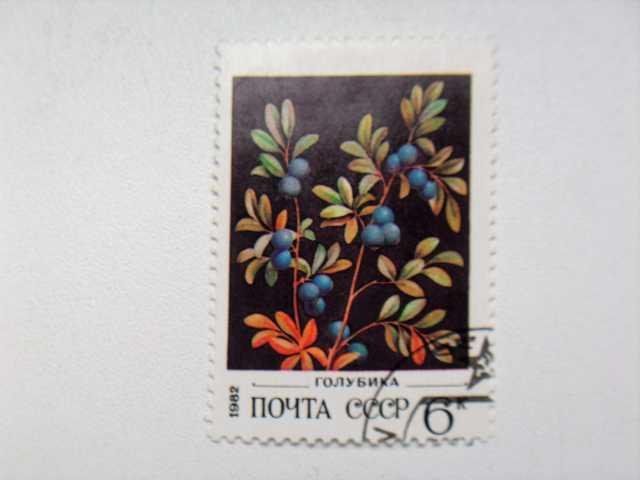 Продам Марка 6к 1982 год СССР Голубика