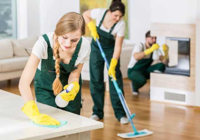 Предложение: Генеральная уборка. Мытье окон