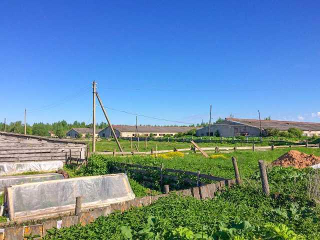 Продам: фермерское хозяйство