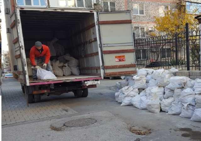 Предложение: Вывоз и утилизация разного мусора.