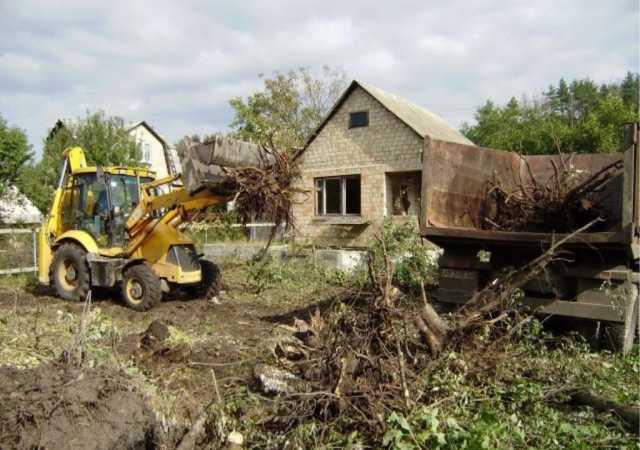 Предложение: Расчистка участка. Планировка участка. Спил деревьев