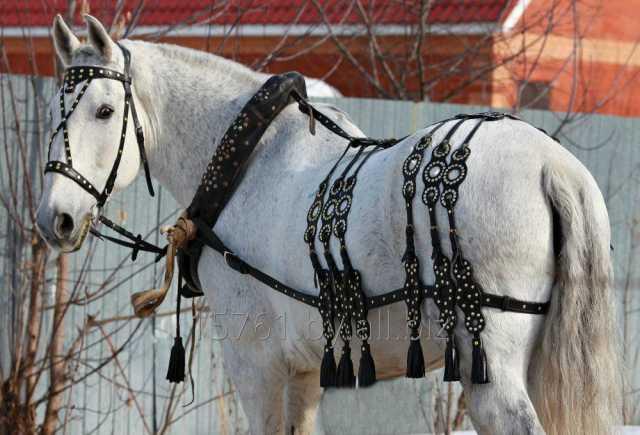Продам Упряжь для лошадей