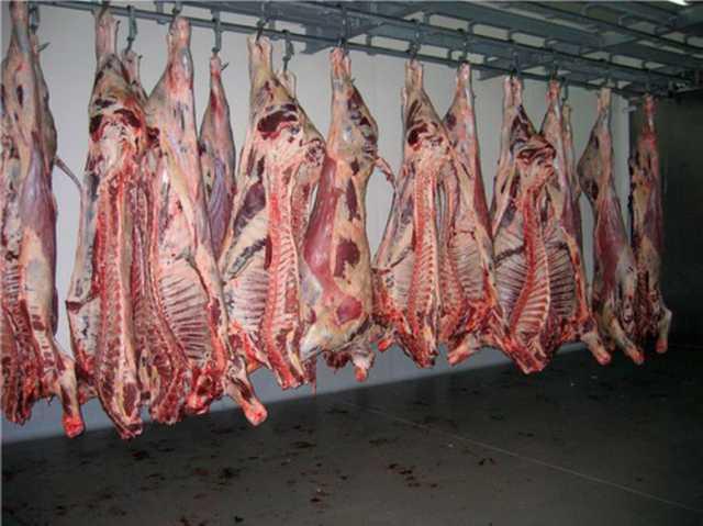 Продам Говядина н/к, б/к, Мясо цыплят бройлера,
