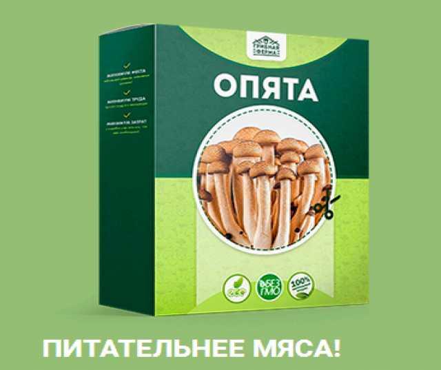 Продам: Набор для выращивания грибов