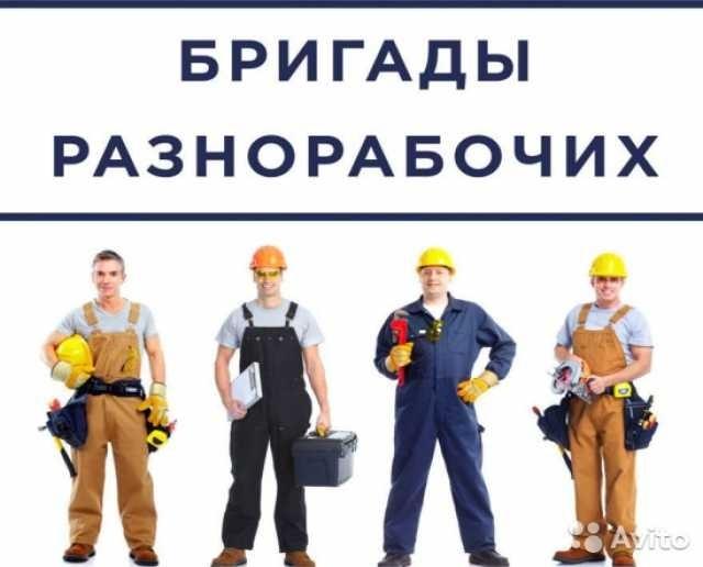 Предложение: предлагаем услуги, разнорабочие, бригады