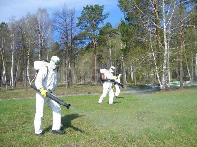 Предложение: Обработка участков от клещей и комаров